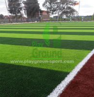 نجيل صناعي Artificial Grass